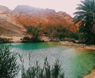 Chebika Oasis in Tunisia